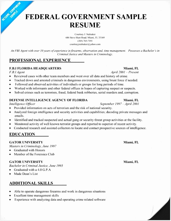 Work Experience Resume format Professional Resume Templates Nice Advantage Resume 0d High School 752582swdfv